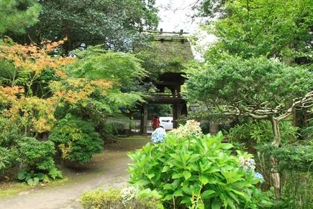 佛山寺 (2).JPG