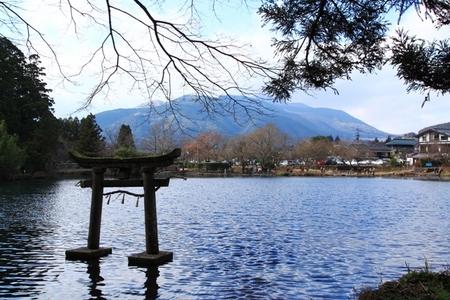 金鱗湖と金毘羅宮の鳥居.JPG
