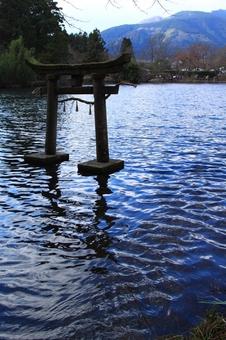 金鱗湖に流れ込む湧水.JPG