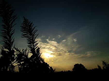 彩雲と幻日