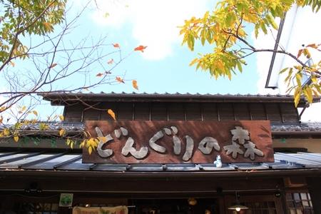 どんぐりの森 (2).JPG