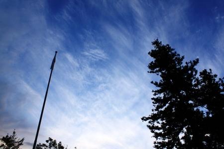 雲 (3).JPG