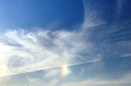 幻日と鳥雲.JPG