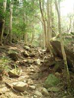 行縢山23.JPG