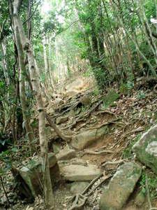 行縢山28.JPG