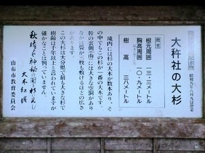 大杵社 �A.JPG