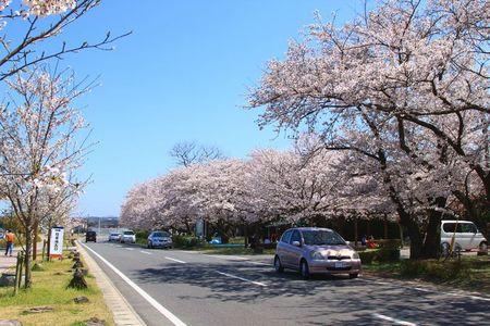 大貞公園.JPG