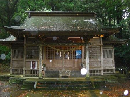 下野八幡神社・社殿.JPG