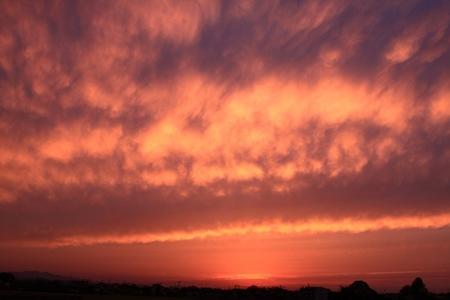 夕陽2013.04.30 1919 (2).JPG