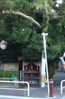 榎の井戸 (4).JPG