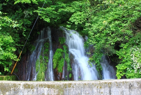 滝 (2).JPG
