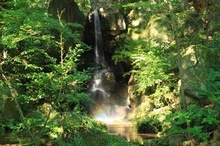 滝と虹 (3).JPG