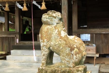 狛犬 (2).JPG