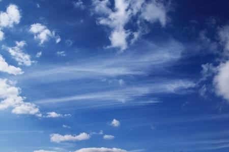 空・絹雲.JPG