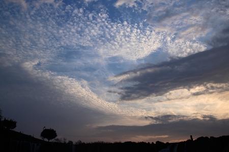 雲たち (3).JPG